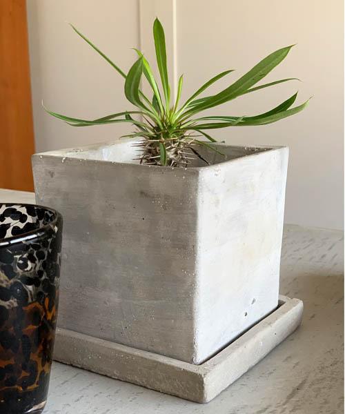 花瓶 SOLID PLANTER L 買い物 人気ブランド CUBE